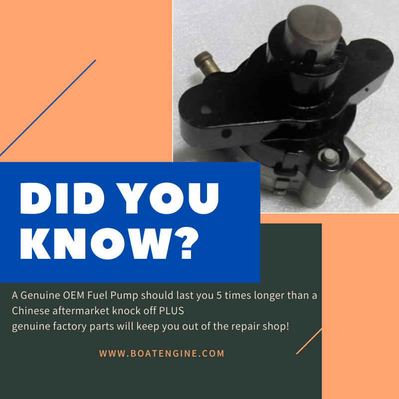 did you know fuel pump oem